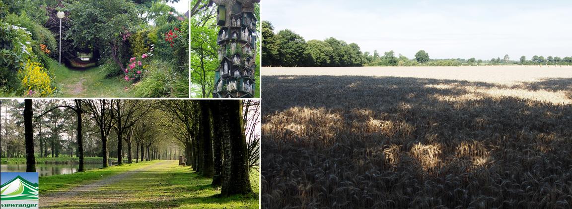 Les chemins de l'Ardenne